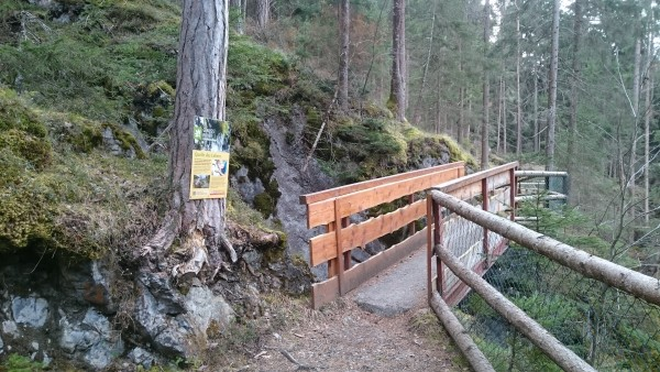 Kronburgschlucht Banana - Brücke Forstweg