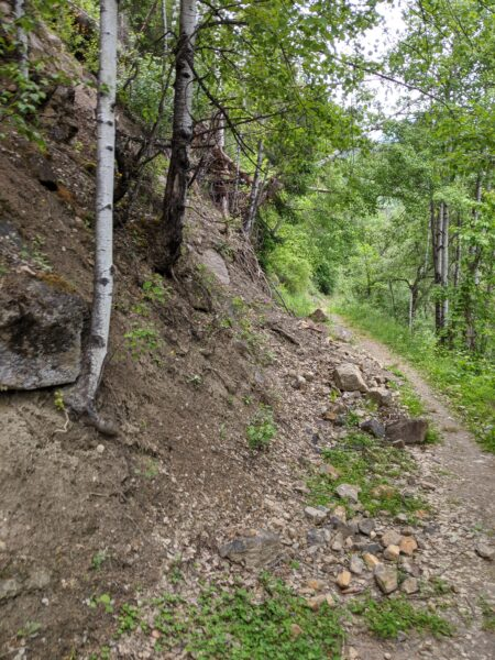 Steinschlagrisiko Wallfahrtsweg Kaltenbrunn